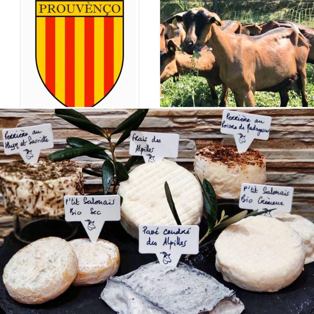 /à fromage de cuisine Th/é Serviette Fran/çais Fromages de France